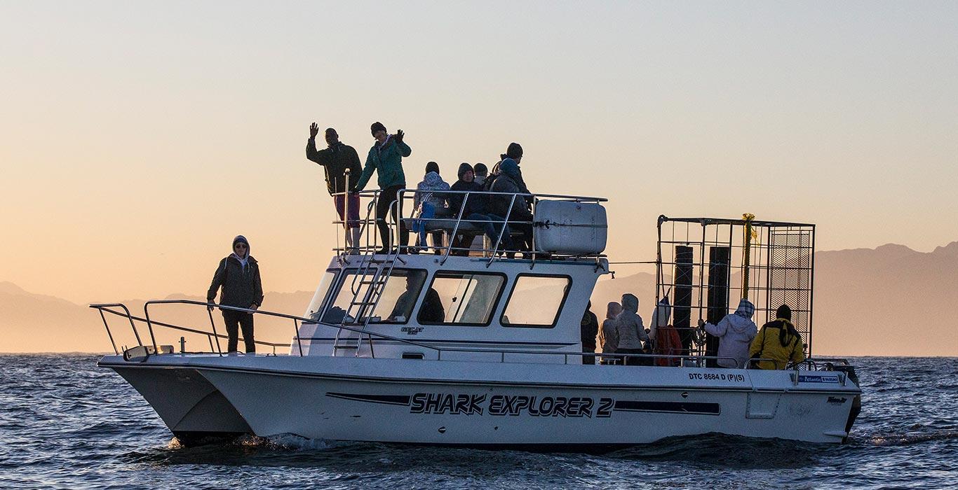 Shark Explorers Fleet - Shark Explorer 2