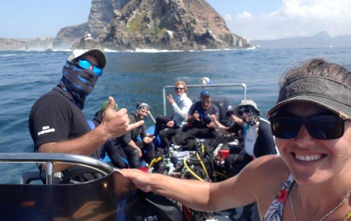 Offshore Shark Diving Cape Town
